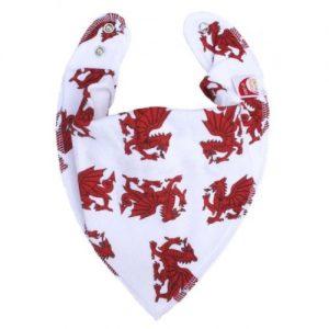 Dragons DryBib Bandana
