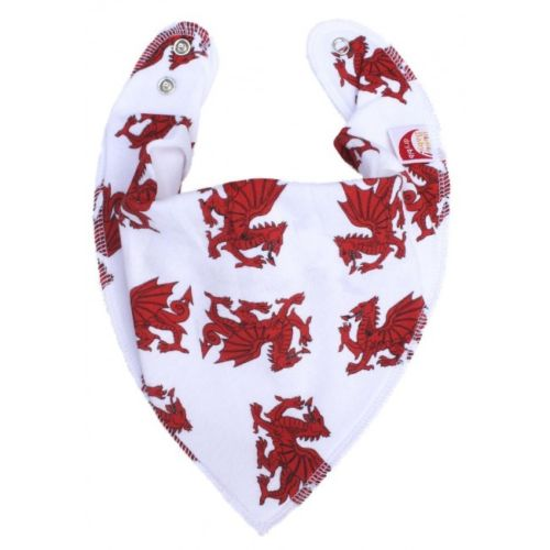Dragons DryBib Bandana